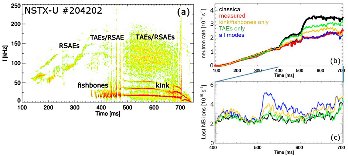 (a) NSTX-U scenario with unstable TAEs, fishbone and kink modes. (b) Neutron rate from measurements (red) and TRANSP + kick model simulations that include different types of instabilities. (c) Simulated fast ion loss rate for the cases shown in (b).